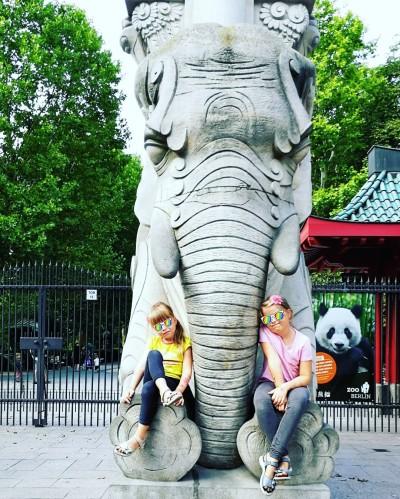 Hallo Elefanti
